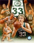 medium_larry_bird.jpg