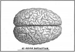 el roto brain.jpg